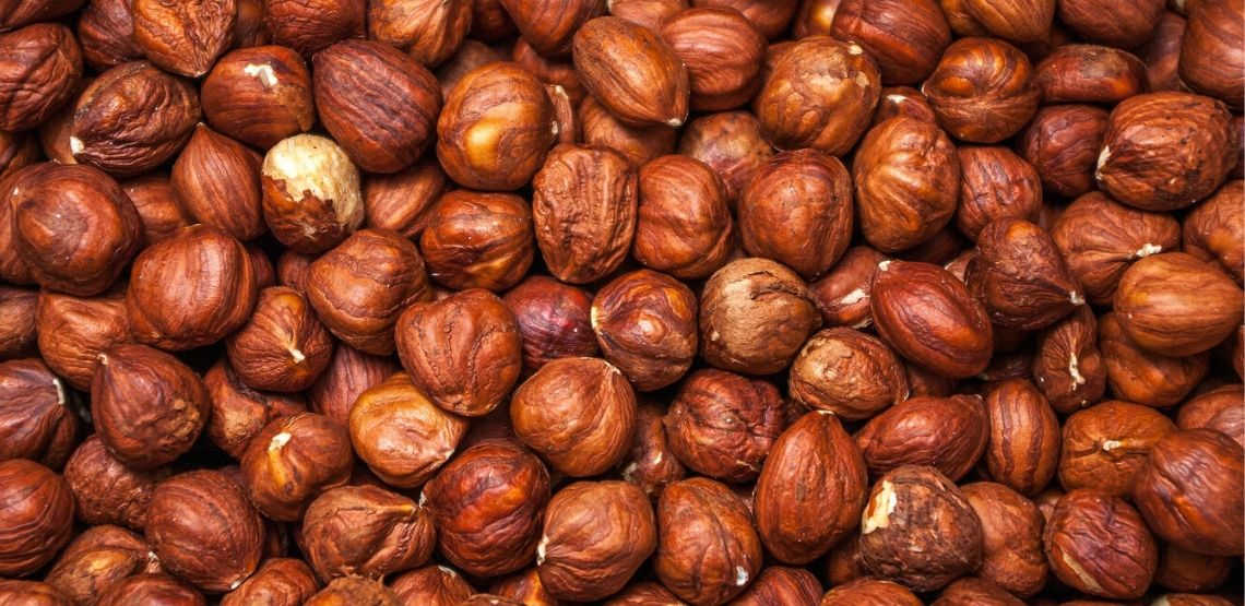 a cluster of hazelnuts: an example of sources of protein